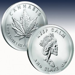 1 x 1 oz Silverround Silver Shield...