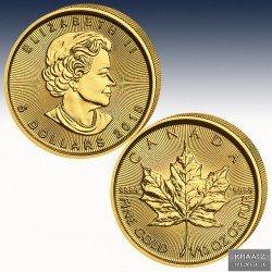 1 x 1/10 Oz Goldmünze 5$ Canada...
