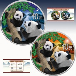 2 x 30g Silber 20 Yuan China Panda...