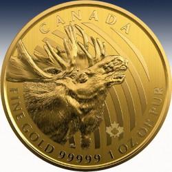 "1 x 1 oz Goldmünze 200$ Canada ""Moose 2020"" -Blister-"